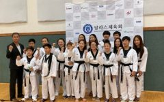 The Taekwondo Warrior
