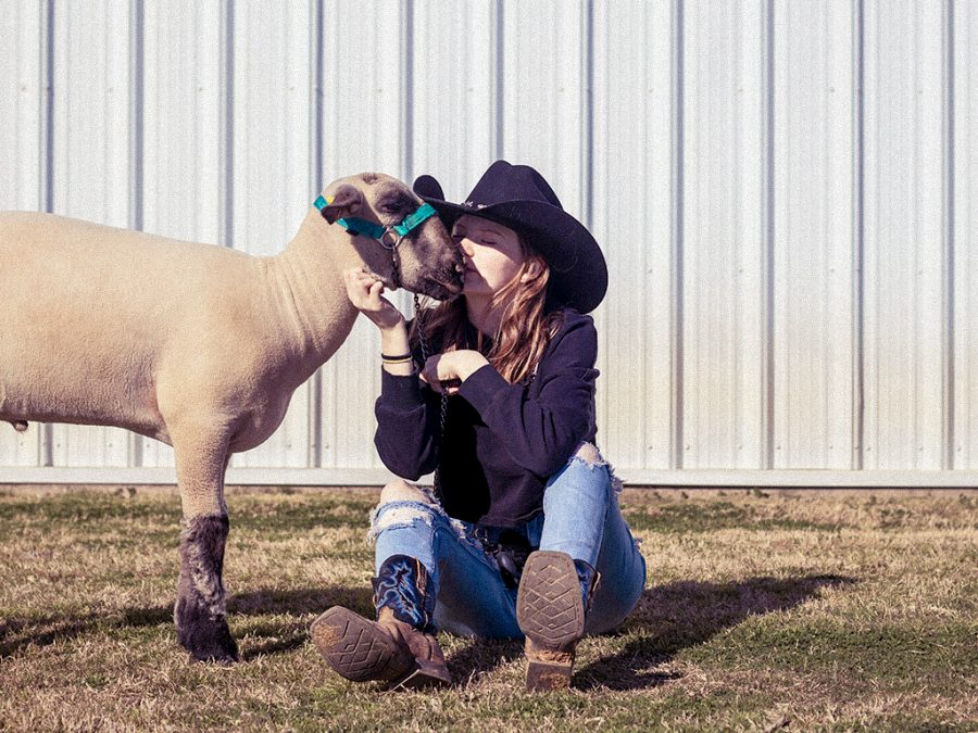 FFA prepares for spring competitions